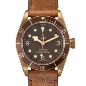 TUDOR BLACK BAY BRONZE M79250BM-0005