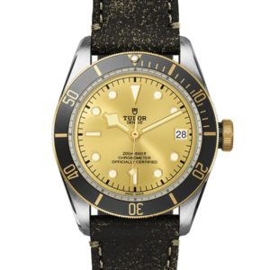 TUDOR BLACK BAY S&G M79733N-0003