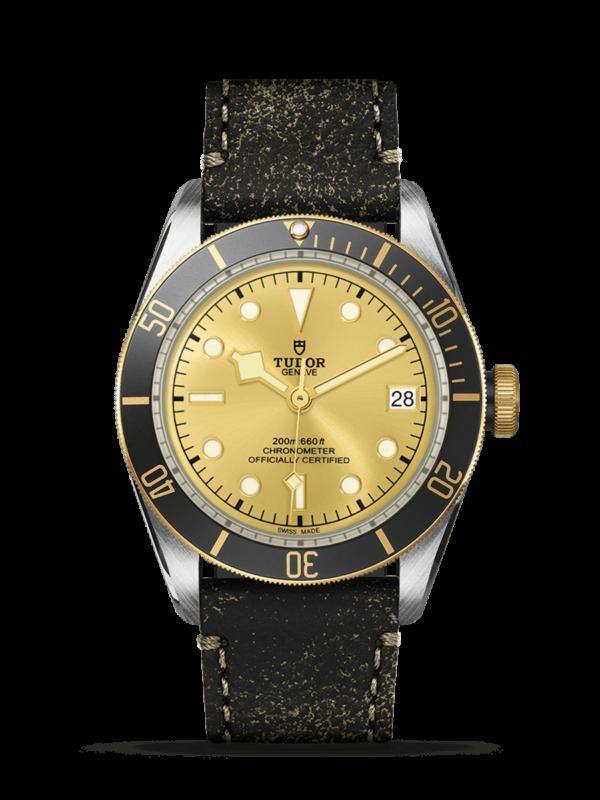 TUDOR BLACK BAY S&G M79733N-0003