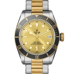 TUDOR BLACK BAY S&G M79733N-0004