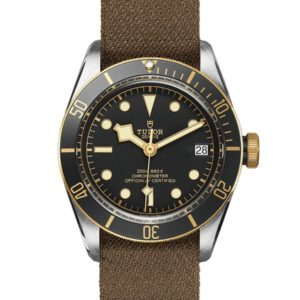 TUDOR BLACK BAY S&G M79733N-0005