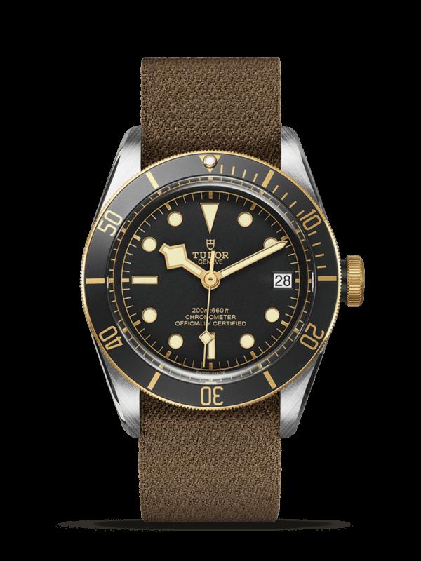 TUDOR BLACK BAY S&G M79733N-0005