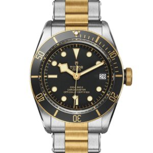 TUDOR BLACK BAY S&G M79733N-0008